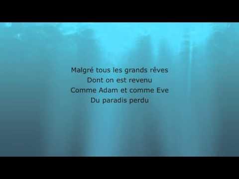 Celine Dion - On S'est Aime A Cause (Lyrics)