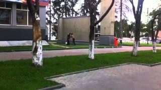 Двое пьяных мужчин устроили разборку возле мэрии Южно-Сахалинска