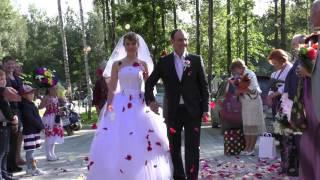 Свадьба Дмитрия и Надежды