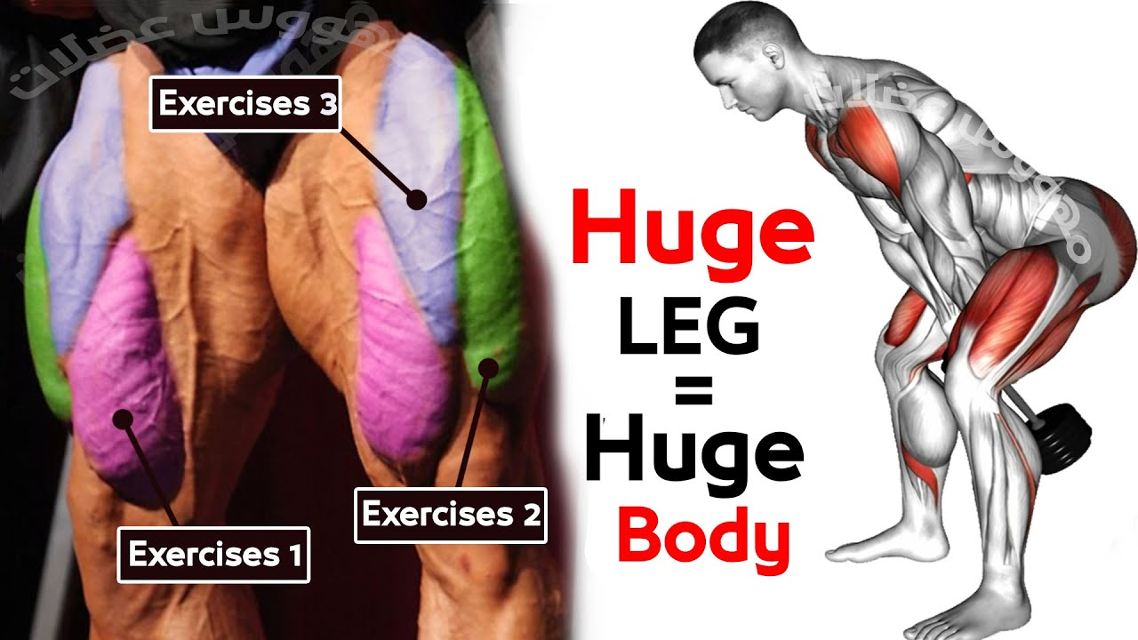 10 MIN LEG WORKOUT Exercises -  Thighs, Booty, hamstring,Quadriceps