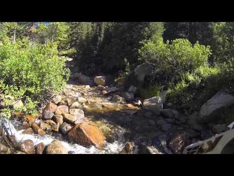 Colorado Trail Riding - Taylor Pass, Taylor Park