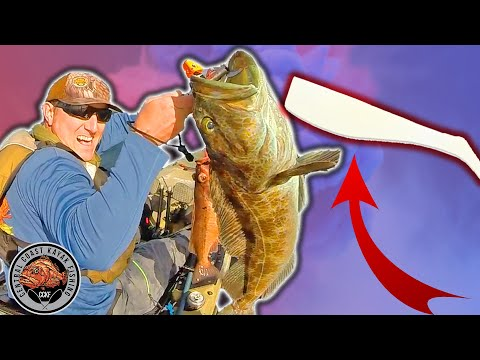 Basic Rockfish And Lingcod Lures