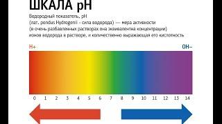 видео Внутрижелудочная pH-метрия, что это?