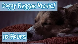 Reggae Music for Dogs! Relaxing Music for Dogs with Reggae Influence, Create a Calm and Happy Dog!