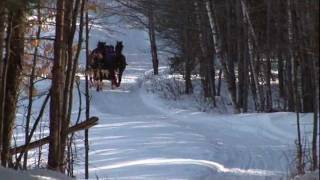 Sleigh Ride sung by Andy Williams (HD)