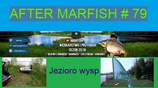 After Marfish # 79 Jezioro wysp, Piknik, Liga Marfisha, Live czat.