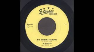 The Raindrops - The Golden Stairway - Gospel Bop 45