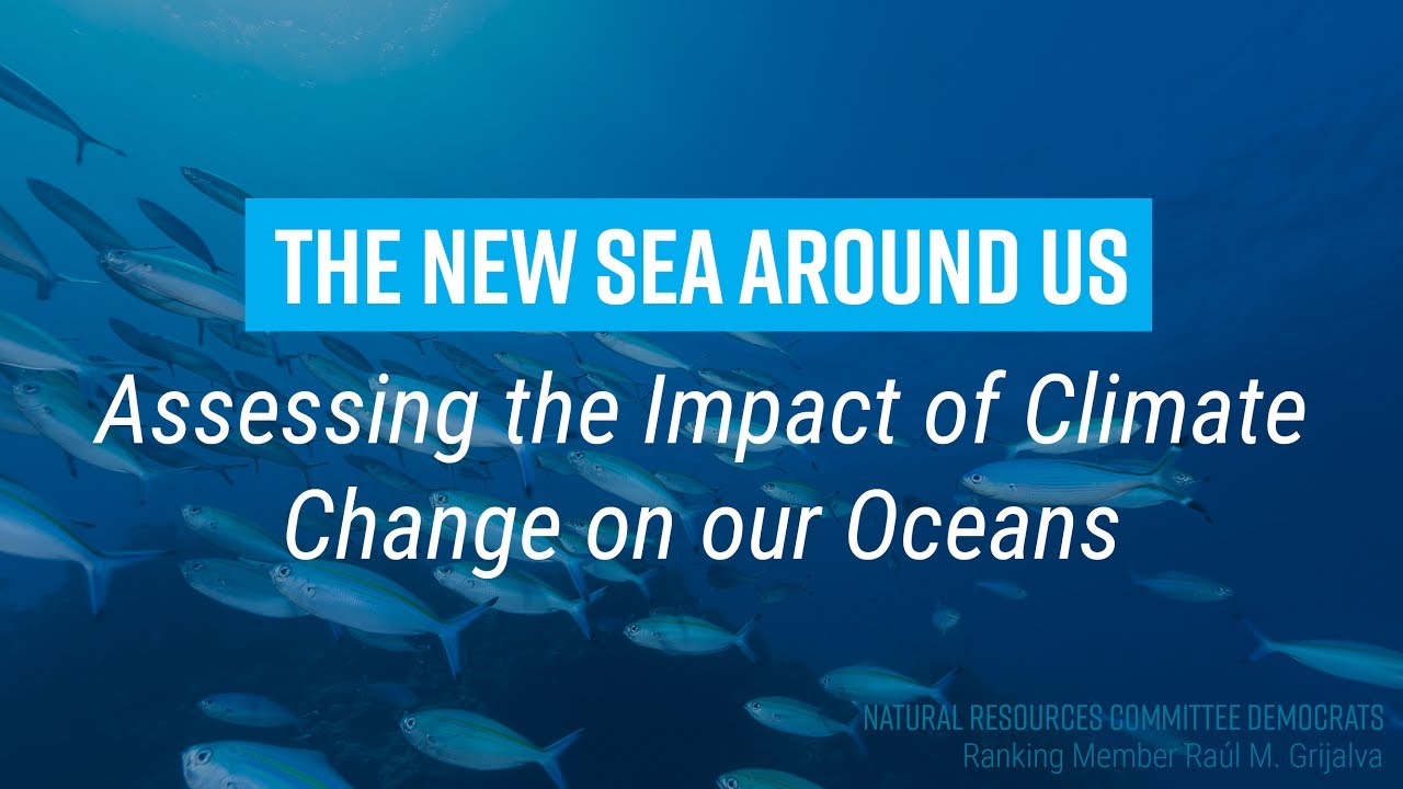 The New Sea Around Us: Assessing the Impact of Climate Change on Our Oceans