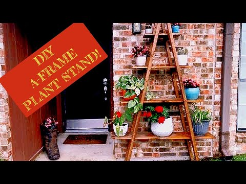 Ladder plant stand DIY