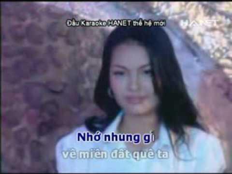 Nguoi thuong ke nho   Ngoc Son - Karaoke