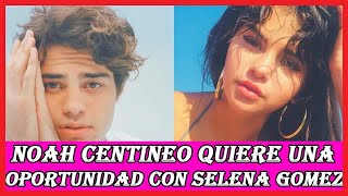 Download Video Noah Centineo quiere una cita con Selena Gomez y esto fue lo que dijo MP3 3GP MP4