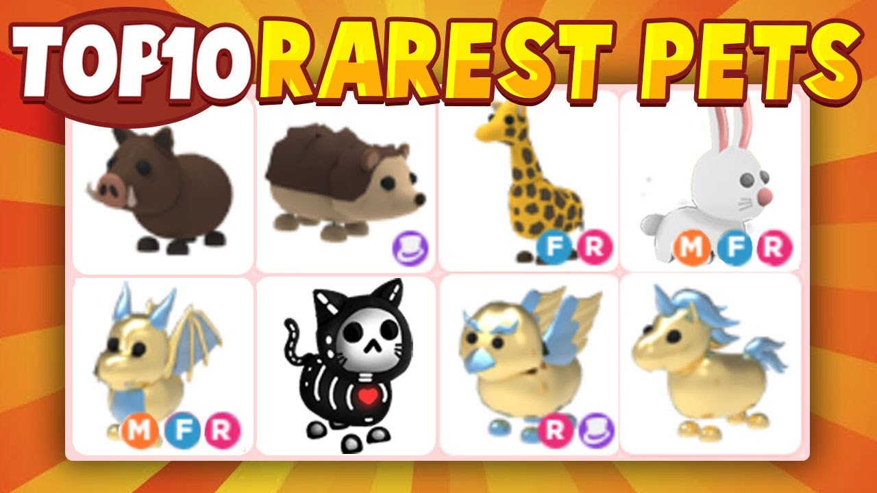Top 10 Rarest Pets In Adopt Me Roblox adopt Me YouTube