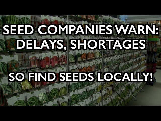 Seed Companies Warn of Shortages, Delays - So Find Them Locally!