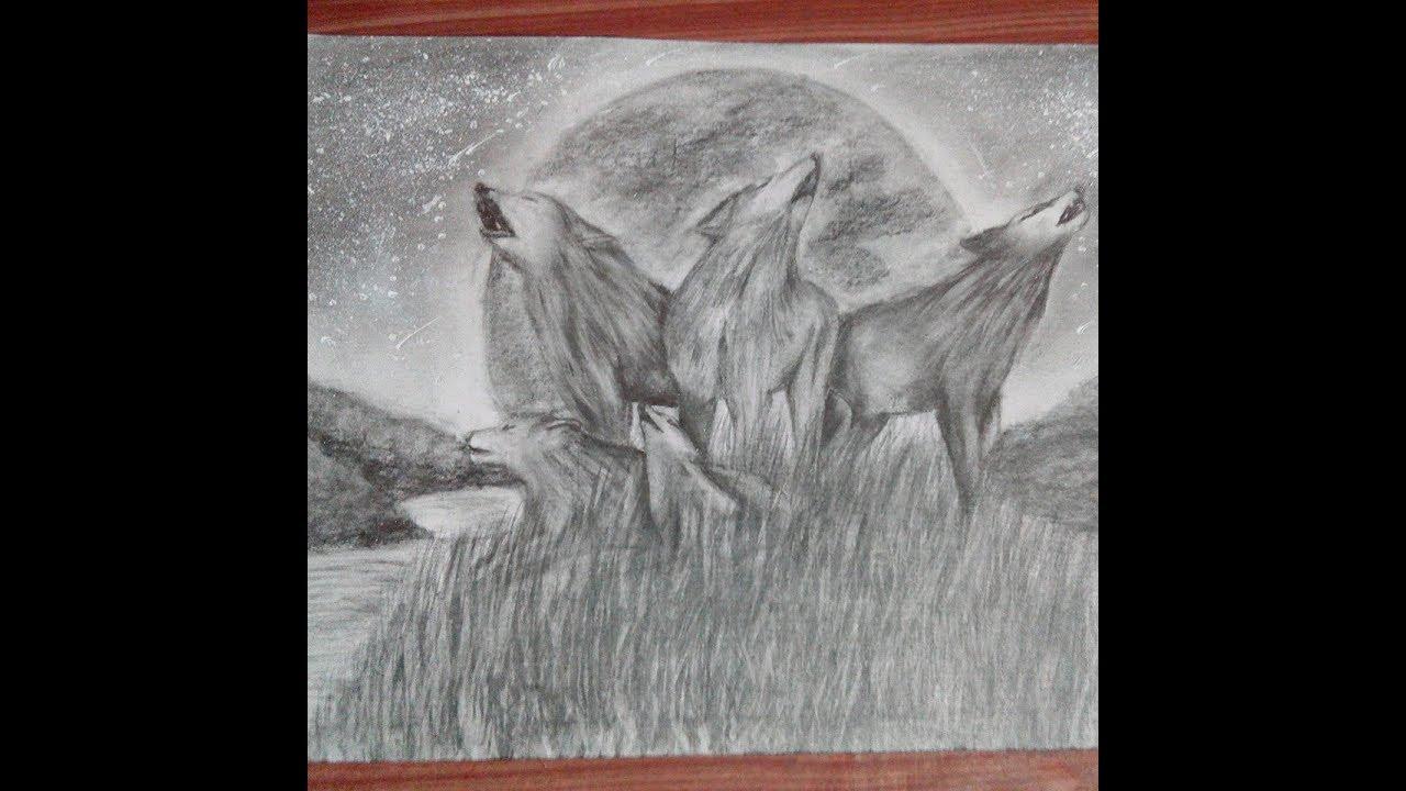 Dibujo A Lápiz Familia De Lobos Youtube