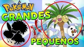 TOP 10 POKÉMON MÁS GRANDES y PEQUEÑOS