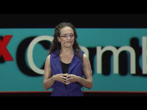 Baby Brains: Unlocking Our Humanity | Rebecca Saxe | TEDxCambridge