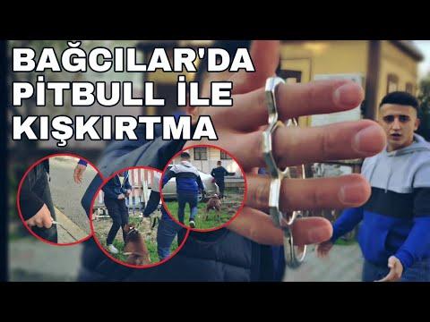 BAĞCILAR'DA PİTBULL İLE KIŞKIRTMA! (bıçak-muşta çektiler )