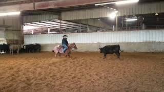Thunder-Jared Lesh cowhorses