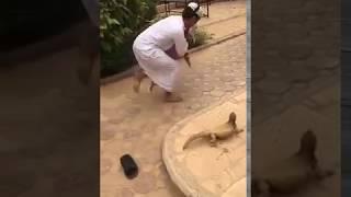 Brave Saudi boy //