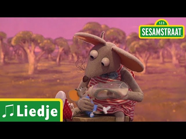 Mini Ieniemienie - Liedje - Sesamstraat