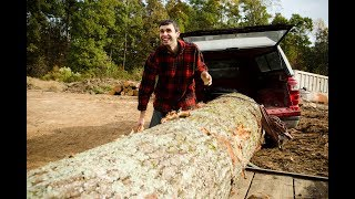 How to Choose a Log for Woodworking with Elia Bizzarri