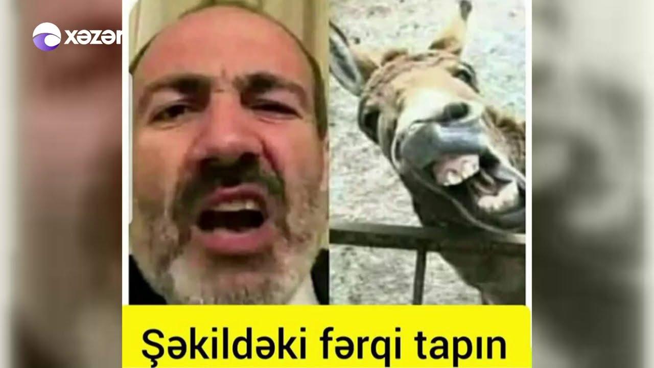 Gənclərin yeni yumor qəhrəmanı - Paşinyan