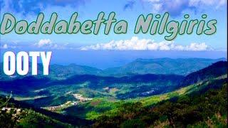 Ooty Doddabetta Highest Mountain in Nilgiri Hills India - Part 2 *HD*