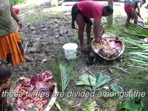 FSM - Chuuk -- Glimpses of Puluwat atoll