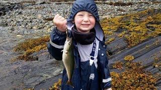 Fishing UK for 21 Days (PART 3) - Fishing Scottish Highlands & Loch Ness
