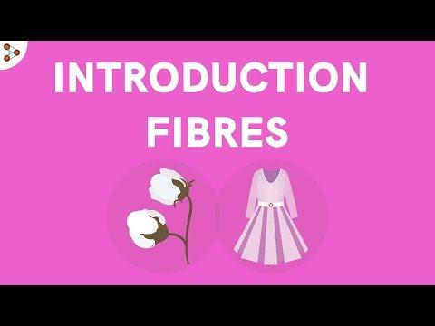 Fibres to Fabrics - Introduction   Types of Fibres   Don't Memorise