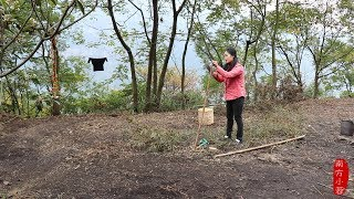 【南方小蓉】隱居大山深處的雲南女子小蓉 采野草紮掃帚 過著閑雲野鶴的慢生活