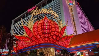LAS VEGAS | BEST VEGAS HOTEL | VIEW OF THE STRIP | NOV. 2020 | FLAMINGO HOTEL
