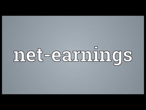 Net-earnings Meaning