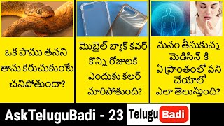 AskTeluguBadi Episode 23 | Most Interesting Questions and Answers in Telugu | Telugu Badi