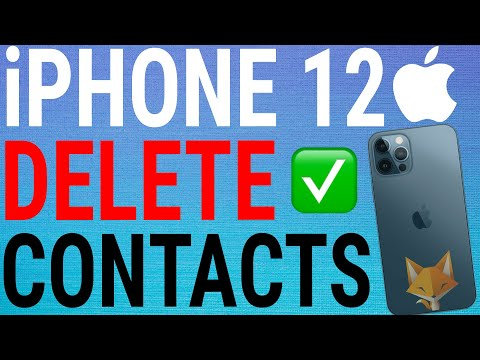 Easy Tutorial on How to delete all contacts from iPhone 11, X, Xs, 8, 7, 7 plus, 6, 6 plus, 6s, 5 an.