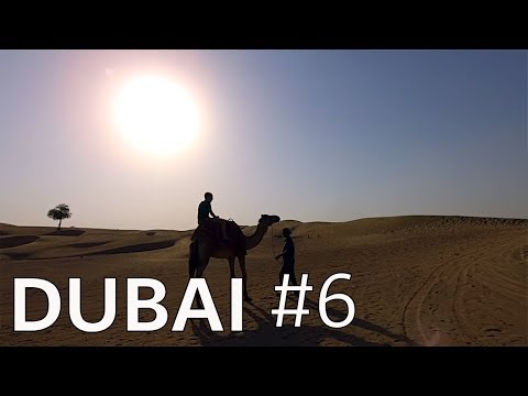 Dubai Desert Safari // It's a must do! (2019)
