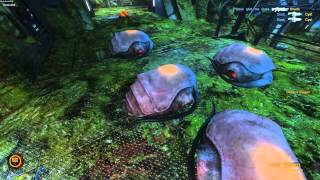 NS2HD[463] - Pub Game Alien - Natural Selection 2 Beta