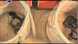 видео Мази со змеиным ядом: препараты и их цена, как применять