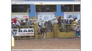 Rodeo at the Navajo Nation Fair 2013