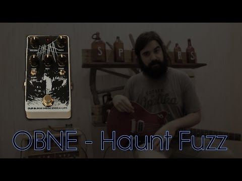 Haunt Fuzz by Old Blood Noise Endeavours Demo - Spicer's Music