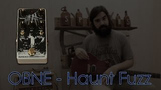 Haunt Fuzz by Old Blood Noise Endeavours Demo - Spicer