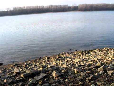 Drought, Danube River, Hungary 2011