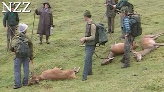 Jagdsaison - Dokumentation von NZZ Format (1993)