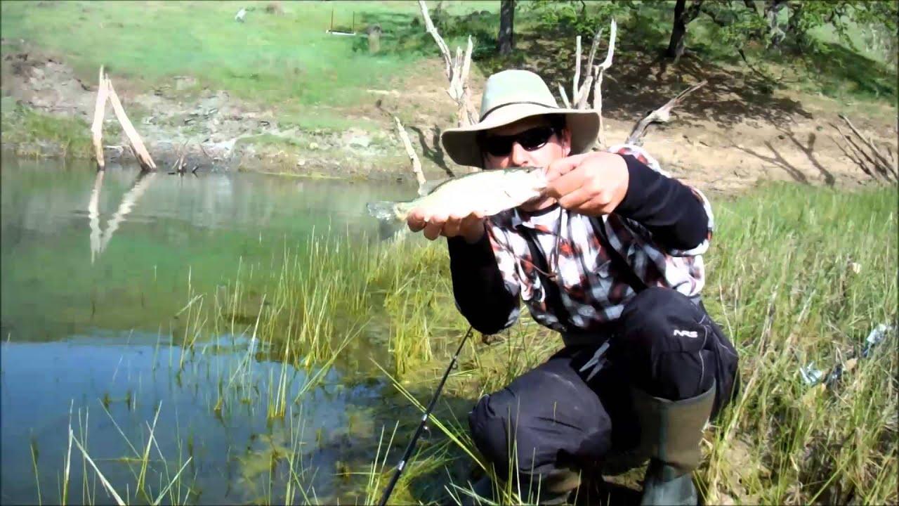 Lake sonoma 4 3 13 youtube for Lake sonoma fishing report