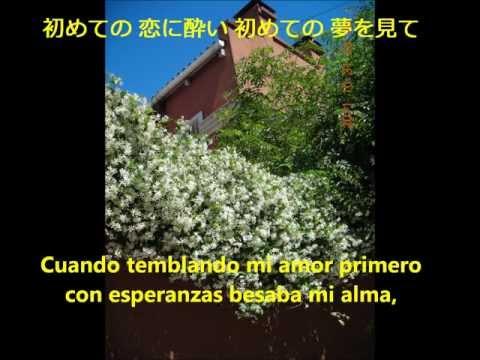 Madreselva(tango karaoke) つた蔓(カラオケ タンゴ 歌詞)