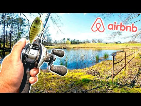 Fishing A HIDDEN POND Behind Our AirBnb!!! --Texas Bass Fishing Day 1