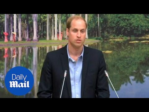 Prince William makes a speech against illegal wildlife trade - Daily Mail