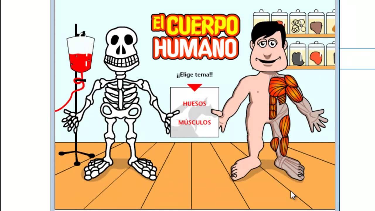 Diccionario. El Cuerpo Humano - Los Huesos y Musculos - YouTube