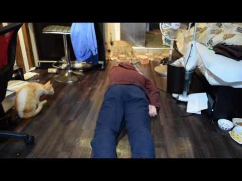 飼い猫の前で死んだふりをしてみたら・・・!!! I pretended to die in front of a cat