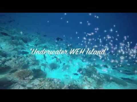 Underwater Weh Island, Sabang - Aceh, Indonesia.